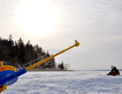 Ice fishing rod